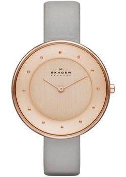 Skagen Часы Skagen SKW2139. Коллекция Leather skagen часы skagen skw6143 коллекция leather