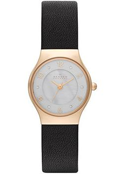 Skagen Часы Skagen SKW2209. Коллекция Leather skagen часы skagen skw6143 коллекция leather