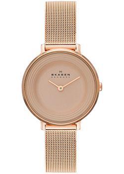 цена Skagen Часы Skagen SKW2213. Коллекция Mesh онлайн в 2017 году