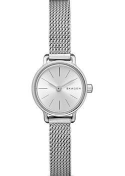 цена Skagen Часы Skagen SKW2379. Коллекция Mesh онлайн в 2017 году