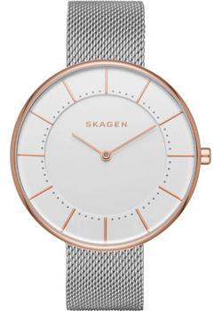 Skagen Часы Skagen SKW2583. Коллекция Mesh skagen часы skagen skw2142 коллекция mesh