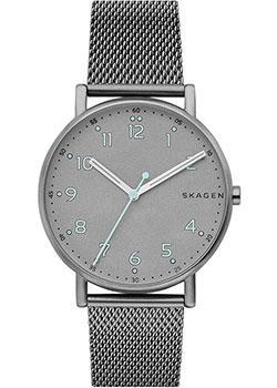 цена Skagen Часы Skagen SKW6354. Коллекция Mesh онлайн в 2017 году