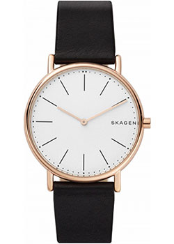 Часы Skagen Leather SKW6430
