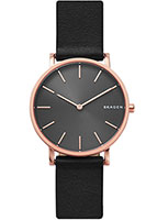 c2e3a429f744 Наручные часы Skagen. Оригиналы. Выгодные цены – купить в Bestwatch.ru