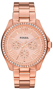 Fossil Часы Fossil AM4483. Коллекция Cecile fossil cecile am4481