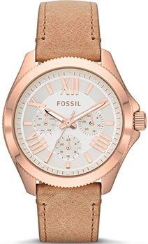 Fossil Часы Fossil AM4532. Коллекция Cecile fossil cecile am4481