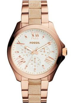 Fossil Часы Fossil AM4622. Коллекция Cecile fossil cecile am4481